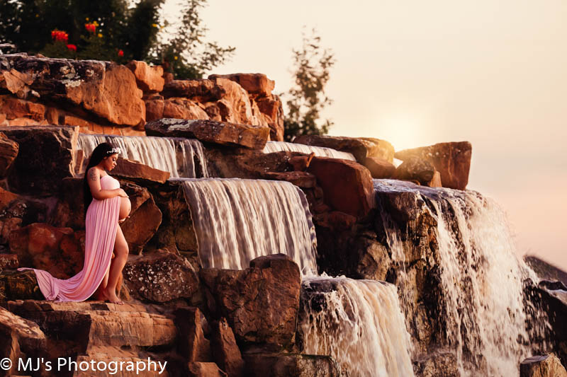 Cypress photography